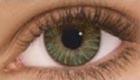 Air Optix Colors (2 čočky) - nedioptrické / Green