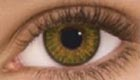 Air Optix Colors (2 čočky) - nedioptrické / Hazel