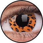 ColourVUE Crazy Lens / Yellow leopard