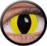 ColourVue Sclera Crazy Lens 17 mm ( 2 čočky) - nedioptrické / Cheetara