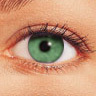 FreshLook 1-Day / Green