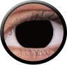 Magic Eye Crazy (2 čočky) - nedioptrické / Black