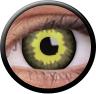 Magic Eye Crazy (2 čočky) - nedioptrické / Eclipse