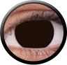 Magic Eye Crazy (2 čočky) - nedioptrické / Extra d.brown