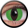 Magic Eye Crazy (2 čočky) - nedioptrické / Green cat