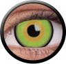 Magic Eye Crazy (2 čočky) - nedioptrické / Mad hatter