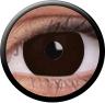 Magic Eye Crazy (2 čočky) - nedioptrické / New iris dark