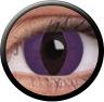 Magic Eye Crazy (2 čočky) - nedioptrické / Purple cat