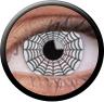Magic Eye Crazy (2 čočky) - nedioptrické / Spider web