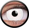 Magic Eye Crazy (2 čočky) - nedioptrické / White out