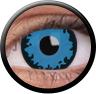 Magic Eye Crazy (2 čočky) - nedioptrické / Wolf