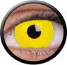 Magic Eye Crazy (2 čočky) - nedioptrické / Yellow out