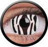 Magic Eye Crazy (2 čočky) - nedioptrické / Zebra