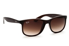 Ray-Ban Andy RB4202 607313 55
